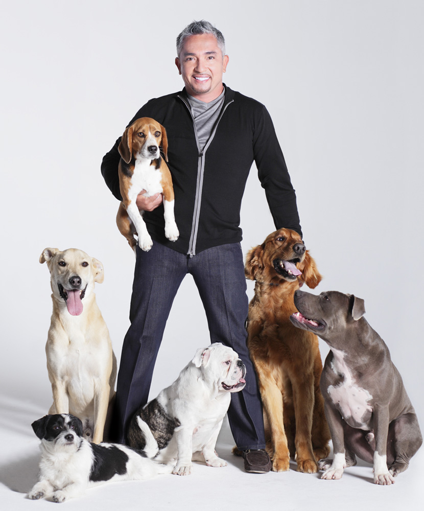 cesar millan and son