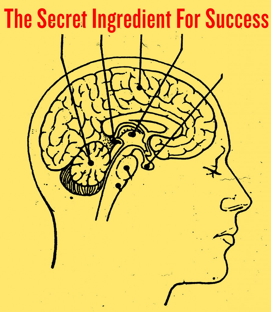 Secret Ingredient of Success the art of doing